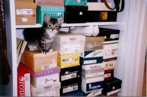 1998 alex and shoes